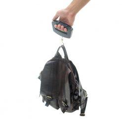 Pèse bagage pognée avec bagage