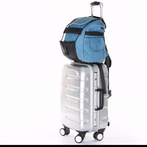 Sangle porte bagage réglable sur valise