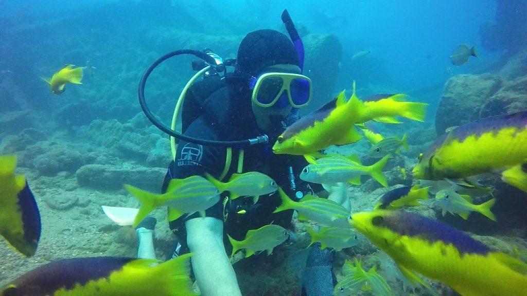 la plongée au Brésil